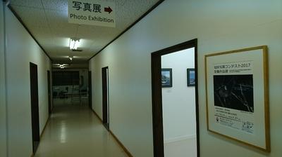 DSC_1055.JPG